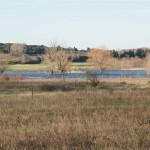 étang de la Capelle