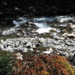 pristine mountain stream in Wuling valley