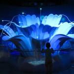 representation of the lotus flower