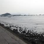 Qingdao waterfront