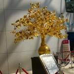 golden bonsai