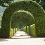 garden at Solar de Mateus